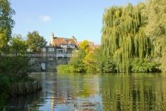 mill pond Cambridge