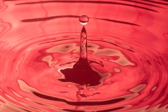 Red Drop - Neil Sumner