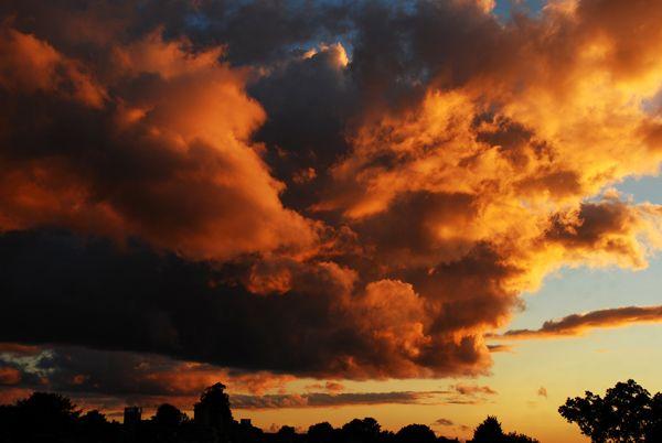 Morton-Street-Sunset_-Terry-Hartga