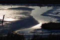 hale-gate-marsh-runcorn