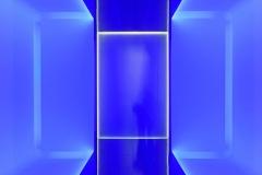 The Blue Chamber - Martin Johnson