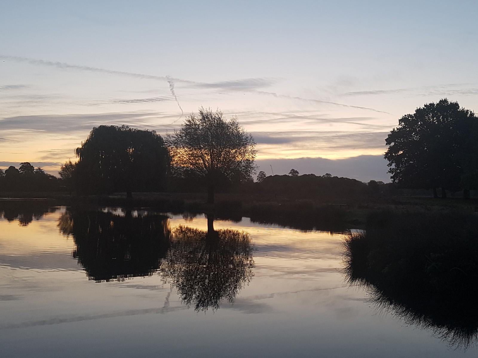 a calm reflection