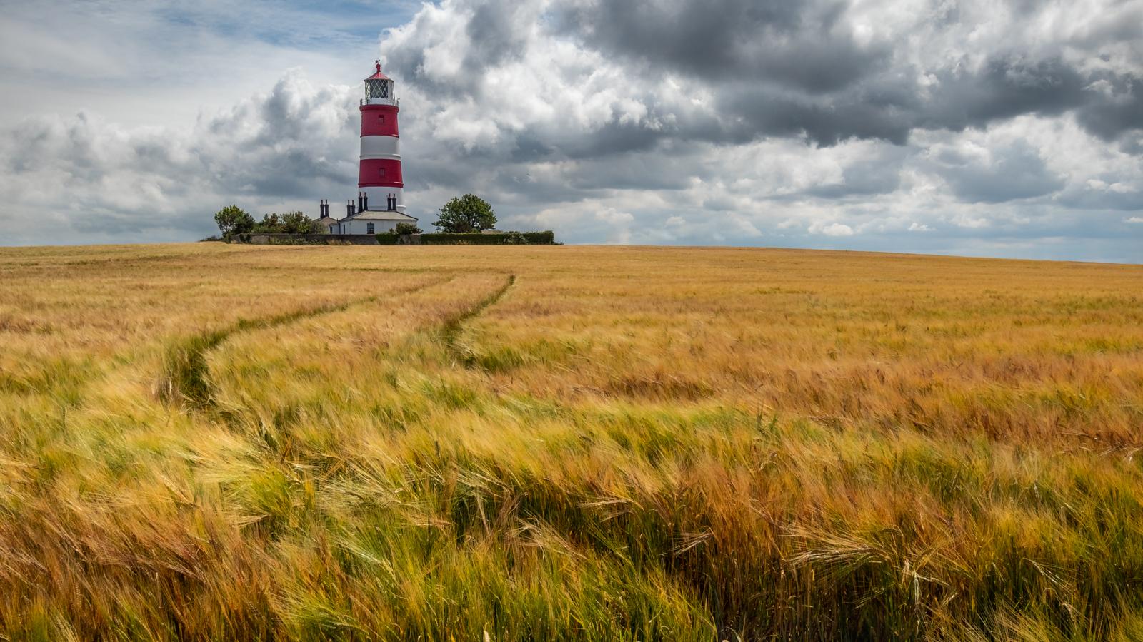Overlooking the barley sea