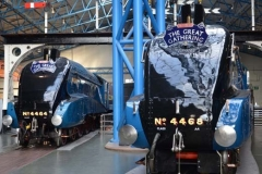The-Great-Gathering-at-NRM-York